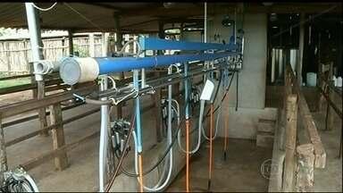 Falta de luz provoca prejuízos em algumas fazendas de Goiás - Algumas propriedades estão sem energia elétrica há pelo menos seis dias. Produtores de leite são os mais prejudicados.