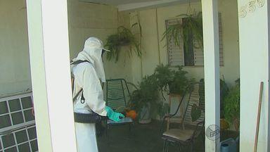 Tambaú e Araraquara, SP, ficam em estado de alerta em relação à dengue - Tambaú e Araraquara, SP, ficam em estado de alerta em relação à dengue