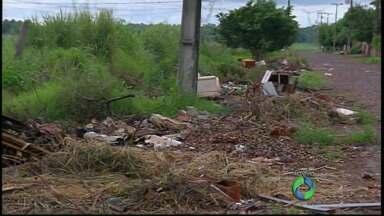 Quem não limpar os terrenos vai ser multado pela prefeitura de Foz - A fiscalização começa na semana que vem.