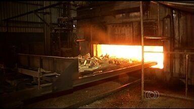 Mais de 2 toneladas de drogas são incineradas em Rio Verde - Material apreendido em operações da Polícia Civil e do Comando de Operação de Divisa foi levado em comboio até uma indústria de grãos, onde foi destruído.