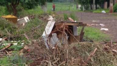 Donos de quintais e terrenos sujos em Foz serão multados a partir de segunda-feira - O valor da multa é a partir de 600 reais.