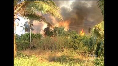 Incêndio em uma área verde assustou motoristas e moradores das margens da BR-222 - Incêndio em uma área verde assustou motoristas e moradores das margens da BR-222
