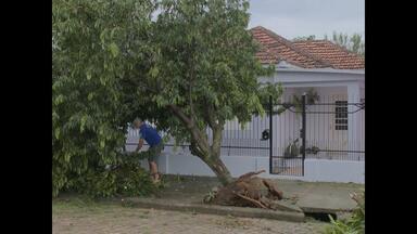 Temporal causa estragos na Região Central do Estado, RS - Restinga Seca e São Gabriel foram algumas das cidades atingidas.