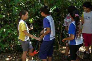 Parque das Neblinas é uma opção para as férias em Mogi das Cruzes - Local possibilita contato direto com espécies nativas.