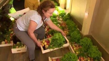 Projeto Fruta Feia reaproveita frutos que seriam descartados - Projeto de Portugual vende a preços mais acessíveis vegetais saudáveis, mas que mercados rejeitam por não serem da cor ou do tamanho esperado