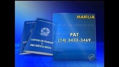 Confira as vagas de emprego na região de Bauru - O PAT de Marília oferece vagas para auxiliar de cabeleireiro, farmacêutico, motociclista entregador e pintor. Informações pelo telefone (14) 3433 – 3469. Em Ourinhos, as vagas são para auxiliar de caldeireiro, barman, borracheiro e funileiro. O telefone do PAT de Ourinhos é (14) 3322 – 5000. Confira outras vagas de empregos em Tupã no vídeo a seguir.