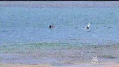 Giro do Nordeste: piscinas naturais de Taipu de Fora na Bahia são chamariz para turistas - Giro do Nordeste: piscinas naturais de Taipu de Fora na Bahia são chamariz para turistas