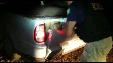 Polícia Rodoviária Federal apreende oito veículos carregados com cigarros em Céu Azul - Ao perceber a ação dos contrabandistas, os policiais fecharam essa via rural, do início ao fim, o que impossibilitou a fuga dos veículos.