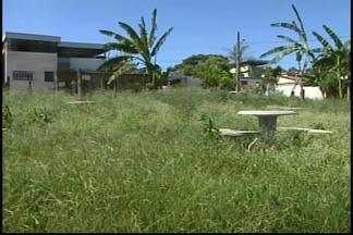 Praça é tomada pelo mato em bairro de Divinópolis, MG - Animais peçonhentos e a falta de estrutura preocupam os moradores do local.Prefeitura afirma que fará levantamento para saber motivo do terreno não receber obras.