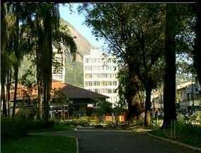 Árvores de praça de Nova Friburgo, RJ, começam a ser podadas após transtornos - Árvores de praça de Nova Friburgo, RJ, começam a ser podadas após transtornos.