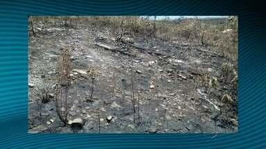 Incêndio em serra do Parque Nacional de Itabaiana é controlado - Incêndio em serra do Parque Nacional de Itabaiana é controlado.