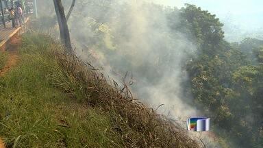 Incêndio atinge vegetação do Banhado em São José dos Campos - Fogo atingiu copa de árvores, mato seco e lixo que estavam no local.
