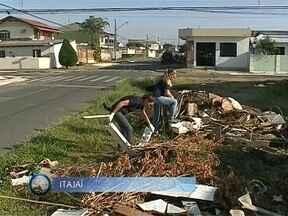 Giro de Notícias: Itajaí tem mutirão de combate ao mosquito transmissor da dengue - Giro de Notícias: Itajaí tem mutirão de combate ao mosquito transmissor da dengue