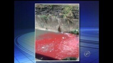 Cetesb não identifica líquido vermelho lançado no rio Bauru - Técnicos da Companhia de Tecnologia de Saneamento Ambiental (Cetesb) não conseguiram identificar a origem dos resíduos despejados na tarde desta terça-feira (20) no trecho do rio Bauru canalizado às margens da Rodovia Marechal Rondon (SP-300), em Bauru (SP). Um pedestre que passava pelo local enviou um vídeo registrando a ocorrência.