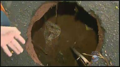 Rua com buraco em Ribeirão Preto gera reclamação de moradores - Eles afirmam que problema acontece há quatro meses e com chuva situação piora.