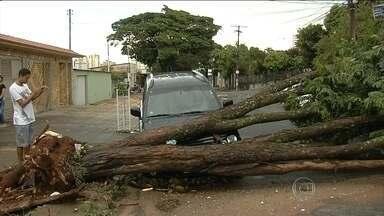 Chuva provoca estragos em Goiás e no Paraná - A chuva provocou estragos em Goiás e no Paraná. A cidade paranaense mais afetada pelo temporal foi Guaratuba. Em Pontal do Paraná, um carro caiu em um riacho que transbordou.