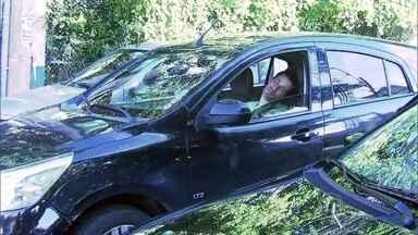 Motorista dorme ao volante e é flagrado por equipe de reportagem - Dr. Fernando Gomes Pinto explica que privação do sono pode ter esse efeito