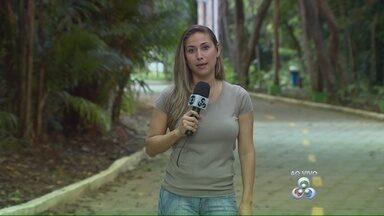 Simpósio sobre sauins é realizado em Manaus - Evento terá duração de 3 dias e tem a intenção de conscientizar as pessoas para preservação da espécie.