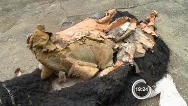 Suspeito de furtar boneco do lobisomem é detido em Joanópolis - Jovem de 19 anos confessou o crime e disse que estava alcoolizado. Após ser destruído, boneco deve ganhar réplica na entrada da cidade.