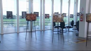 Exposição em Ponta Porã (MS) reúne fotos e pinturas que retratam a região de fronteira - A mostra é uma viagem pela região em que o Brasil e o Paraguai se misturam