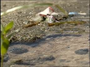 Desperdício de água potável preocupa moradores - Na zona norte de Pelotas o problema acontece desde o início do ano