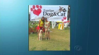 Feira é realizada para arrecadar dinheiro e ajudar animais resgatados nas ruas - Evento acontece um domingo por mês, em ruas fechadas da Orla de Maceió.