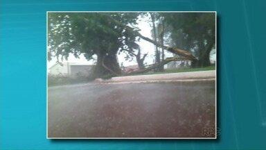 Vendaval atinge Formosa do Oeste - Foi no fim da tarde desta segunda-feira (16). A chuva e o vento mais forte causaram estragos na cidade.