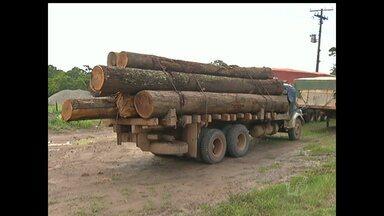 Caminhão com madeira sem licença ambiental é apreendido na BR-163 - Veículo transportava aproximadamente 15,42 metros cúbicos de madeira.Termo Circunstanciado de Ocorrência deve ser encaminhado ao MPE.