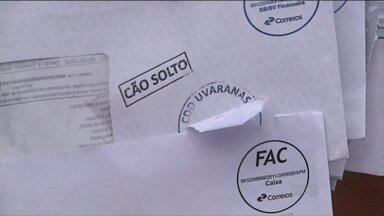 Correios suspendem a entrega de cartas em algumas regiões de Ponta Grossa - O motivo são os cachorros soltos que atacam os carteiros.