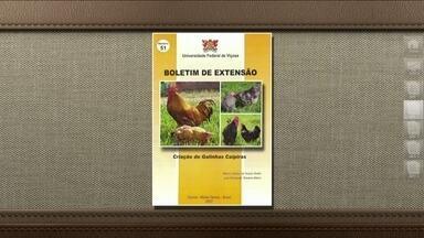 Livro traz orientações sobre a criação de galinha caipira - A Universidade Federal de Viçosa tem uma publicação sobre o assunto que custa R$ 7,50 já com as despesas de Correio.