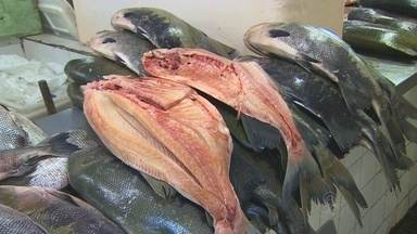 Peixe continua sendo preferência do consumidor no AM - Pesquisa mostra que consumidor pretende gastar menos nessa Páscoa