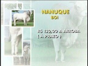 Confira a cotação do boi gordo - Em Governador Valadares a arroba do boi sai por R$ 130 e a da vaca custa R$ 115.