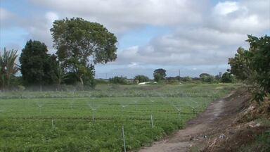 Veja a previsão do tempo para esta semana no Sudoeste da Bahia - Queda na temperatura provoca aumento da produção de hortaliças em Vitória da Conquista.