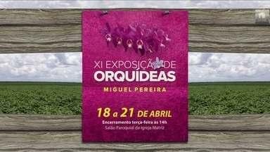 Confira os eventos do setor que acontecem na semana - Tem simpósio de café, exposição de orquídeas e cavalgadas pelo país.