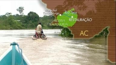 Reservas extrativistas permitem exploração sustentável da natureza - Globo Rural visita Alto Juruá (AC), a primeira reserva extrativista do país.