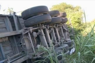 Caminhão cai em ribanceira na BR-101 em Joinville - Veículo havia sido roubado em Itajaí.