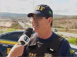 Animais de grande porte têm causado acidentes em rodoivas do Agreste de Pernambuco - Em março deste ano, a PRF apreendeu 52 animais soltos na BR-232 e na BR-104.