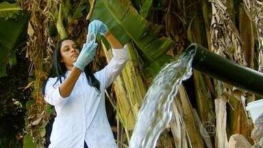 Estudo aponta contaminação da água em Alfenas, no Sul de Minas Gerais - Um projeto da Universidade Federal de Alfenas e da Prefeitura avalia a qualidade da água e aponta que em algumas minas da cidade, a água está imprópria para o consumo.