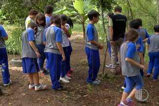 Dono de sítio em Mogi das Cruzes abre as portas para fazer turismo pedagógico - O produtor lucra mostrando a estudantes como se trabalha na propriedade. Conjunto de lazer com o ensino.