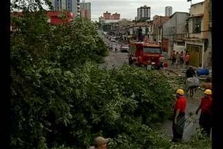 SIPAM afirma que fenômeno da 'Nuvem funil' pode voltar a ocorrer em Belém - As rajadas de vento de até 90 quilômetros por hora destelharam casas, derrubaram postes de energia e arrancaram árvores no bairro da Pedreira na tarde do domingo (17).