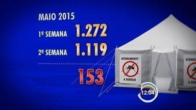 Tenda montada para atender pacientes com dengue em São José dos Campos faz 15 dias - Prefeitura faz balanço do número de atendimentos.