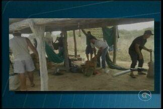 Dez pessoas foram presas pela prática ilegal de caça, em jutaí, distriro de Lagoa Grande - Eles foram flagrados com cinco tamanduás abatidos, cinco tatus vivos, cães, facas, facões, enxadas e foices