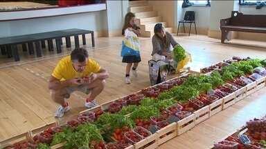 Portugueses criam cooperativa para combater desperdício de alimentos - Em Lisboa, 16 toneladas de frutas e verduras deixaram de ir pro lixo todo mês. Um grupo de portugueses criou uma cooperativa que já conta com 800 sócios e uma fila de espera de mais de 2.500.