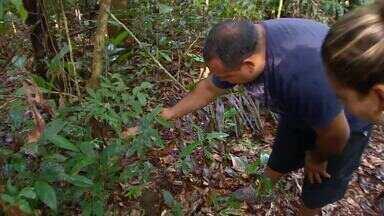 Fundação Amazonas Sustentável promove práticas sociais em comunidades ribeirinhas - A iniciativa surgiu há 7 anos com o objetivo de melhorar a qualidade de vida de moradores de comunidades ribeirinhas