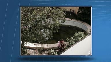Telespectadores enviam novas imagens de possíveis focos de dengue em Salvador - Envie sua denúncia para bmd@redebahia.com.br.
