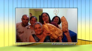 Batata doce gigante é colhida em propriedade rural de Jacobina - A batata pesa mais de três quilos.