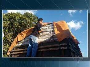 Fiscais apreendem carga de semente de capim irregular - Fiscais apreendem carga de semente de capim irregular