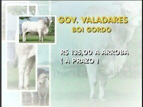 Confira como está o mercado do boi - Em Nanuque, a arroba da vaca está custando R$ 115, a prazo.