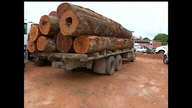 Semma, PM e PRF apreendem 85 metros cúbicos de madeira em Santarém - Como não foi possível identificar a empresa responsável, os motoristas serão multados, por não estarem portando a guia florestal