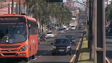 92 pessoas foram atropeladas neste ano em Ponta Grossa - A polícia registrou cinco mortes, a última, ontem.